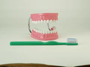 Giant Teeth with Giant Brush
