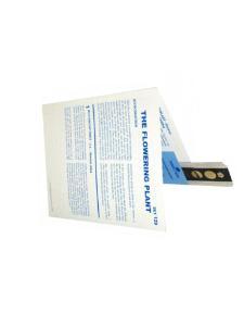 Individual Microslides™