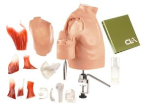 Somso® Arthroscopic Shoulder Joints