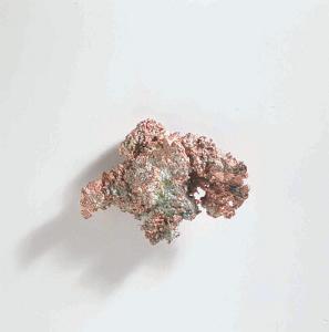 Ward's® Copper