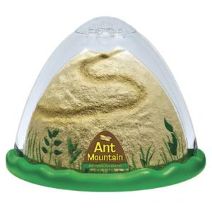 Ant Mountain