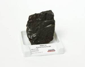 Ward's® Basalt