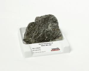 Diorite - Hornblende LS Medium-grained