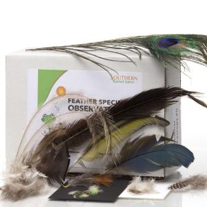 Feather Specimen Kit
