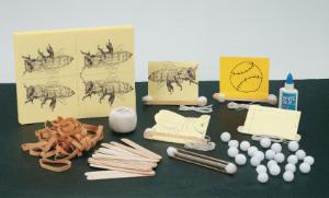 Buzzy Bee: Sound Investigation Kit