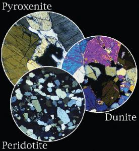 Ward's® Ultramafic Rocks Thin Sections Set