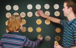 Periodic Table of Cookies Demonstration
