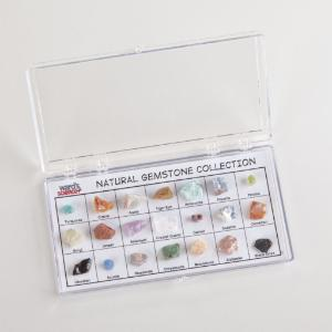 Ward's® Specimen Display Sets