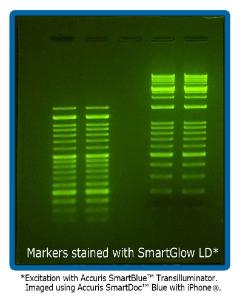SmartGlow™ loading dye with stain for nucleic acid