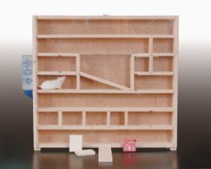 Vertical Mouse Maze