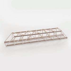 Science Olympiad: Bridge Building