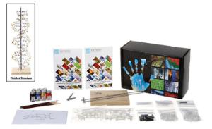 DNA Molecular Model Kit