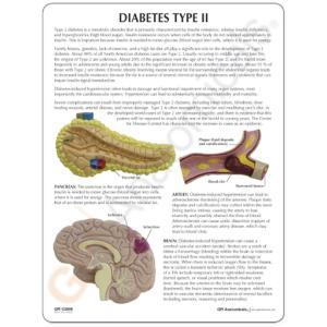 GPI Anatomicals® Type II Diabetes Model