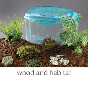 Wards® Mini-Habitat Terrarium Sets