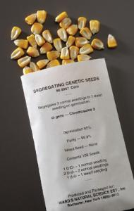 Genetic Ratio Seeds