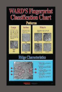Ward's® Fingerprint Classification Chart