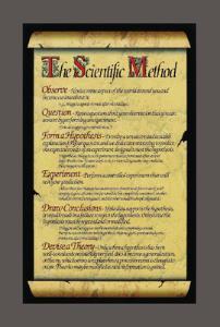 Ward's® Scientific Method Poster